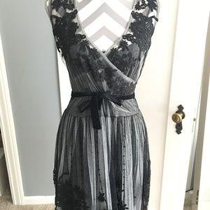 Johnny Was Biya embroidered mesh dress